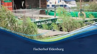 Fischerhof Eldenburg :: Müritzfischer :: Müritzfischer