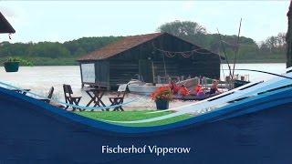 Fischerhof Vipperow :: Müritzfischer :: Müritzfischer