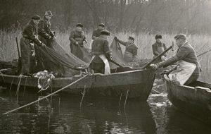 Die 50er Jahre :: Müritzfischer