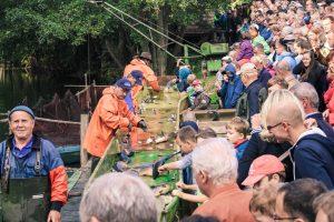 Feste feiern :: Müritzfischer
