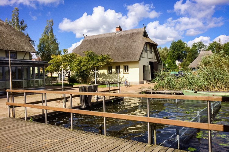 Impressionen vom Fischerhof Krakow :: Ferienwohnung Krakow am See :: Müritzfischer