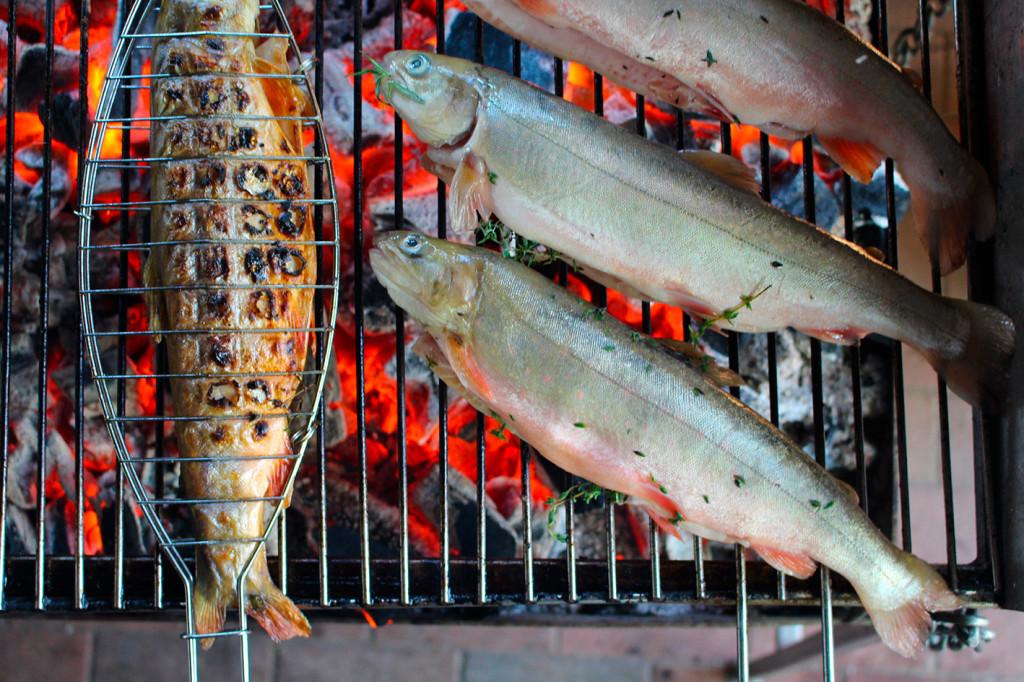 Fischgrillabend :: Müritzfischer