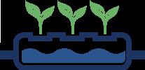 Erdeloses Hydroponik- verfahren mit dem Wasser und den Nährstoffen aus der Fischproduktion